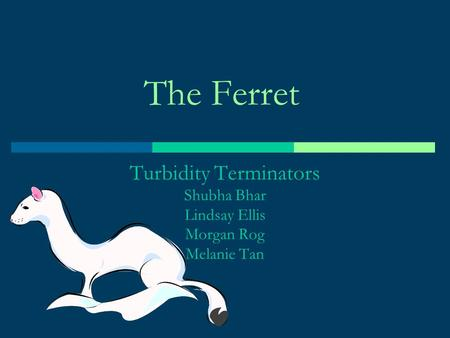 The Ferret Turbidity Terminators Shubha Bhar Lindsay Ellis Morgan Rog Melanie Tan.