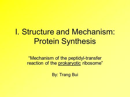 "I. Structure and Mechanism: Protein Synthesis ""Mechanism of the peptidyl-transfer reaction of the prokaryotic ribosome"" By: Trang Bui."