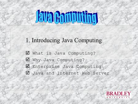 1. Introducing Java Computing  What is Java Computing?  Why Java Computing?  Enterprise Java Computing  Java and Internet Web Server.
