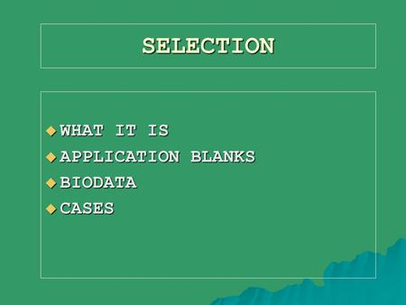 SELECTION  WHAT IT IS  APPLICATION BLANKS  BIODATA  CASES.