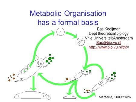 Metabolic Organisation has a formal basis Bas Kooijman Dept theoretical biology Vrije Universiteit Amsterdam