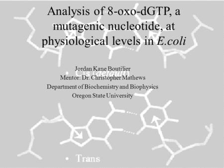 Analysis of 8-oxo-dGTP, a mutagenic nucleotide, at physiological levels in E.coli Jordan Kane Boutilier Mentor: Dr. Christopher Mathews Department of Biochemistry.