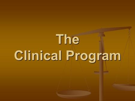 The Clinical Program. 7 CLINICS WITHIN THE CLINICAL PROGRAM Civil Justice Civil Justice Criminal Practice Criminal Practice Immigration Law and Policy.