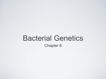Bacterial Genetics Chapter 8. The Problem of Antibiotic Resistance Staphylococcus aureus Common Gram + bacterium Multi-drug resistant strains are prevalent.