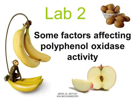Some factors affecting polyphenol oxidase activity