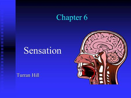 Chapter 6 Sensation Turran Hill Sensation Sensation is the detection of simple properties of stimuli, such as brightness, warmth, and sweetness. Sensation.