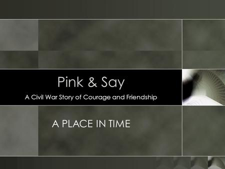 Pink & Say A Civil War Story of Courage and Friendship A PLACE IN TIME.