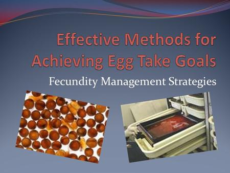 Fecundity Management Strategies. Why Talk About This? As managers, we utilize various methods in managing broodstock collection – we never want to be.