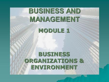 BUSINESS AND MANAGEMENT MODULE 1 BUSINESS ORGANIZATIONS & ENVIRONMENT.