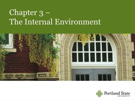 Chapter 3 – The Internal Environment