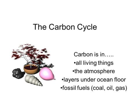 The Carbon Cycle Carbon is in….. all living things the atmosphere layers under ocean floor fossil fuels (coal, oil, gas)