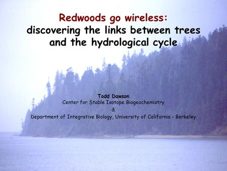 Redwoods go wireless: discovering the links between trees and the hydrological cycle Todd Dawson Center for Stable Isotope Biogeochemistry & Department.