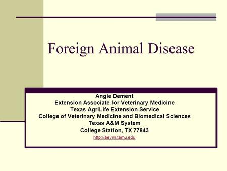 Foreign Animal Disease Angie Dement Extension Associate for Veterinary Medicine Texas AgriLife Extension Service College of Veterinary Medicine and Biomedical.