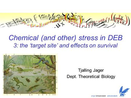 Chemical (and other) stress in DEB 3: the 'target site' and effects on survival Tjalling Jager Dept. Theoretical Biology TexPoint fonts used in EMF. Read.