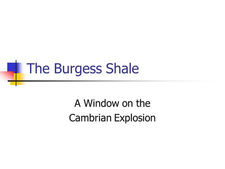 The Burgess Shale A Window on the Cambrian Explosion.