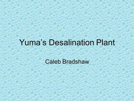 Yuma's Desalination Plant Caleb Bradshaw. Desalination Plants in General There are over 4,000 plants around the world Approximately 800 are located in.