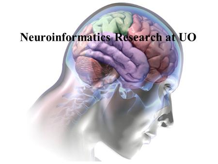 Neuroinformatics Research at UO. NeuroInformatics CenterFeb 2005BBMI: Brain, Biology, Machine Initiative Experimental Methodology and Tool Integration.