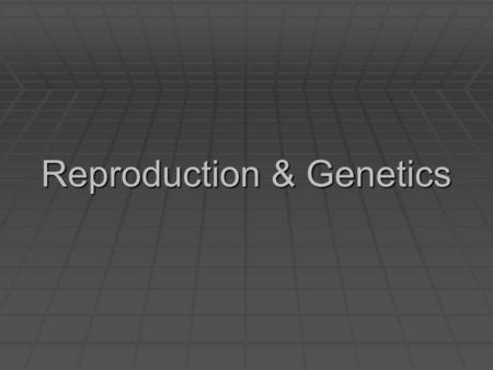Reproduction & Genetics