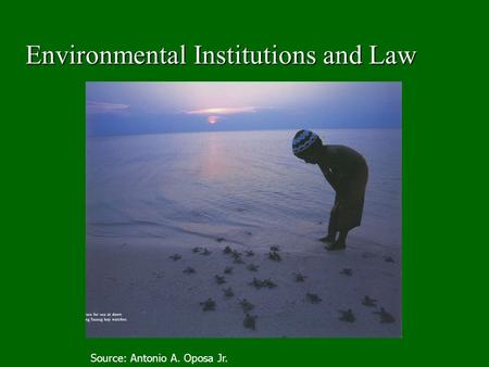 Environmental Institutions <strong>and</strong> Law