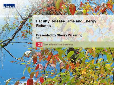 Faculty Release Time and Energy Rebates Presented by Sherry Pickering AUDIT.