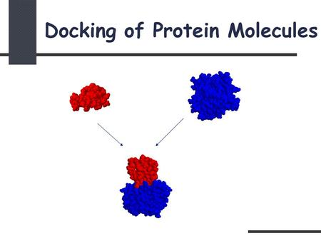 Docking of Protein Molecules. Problem Definition Given two molecules find their correct association: + = Receptor Ligand T Complex.
