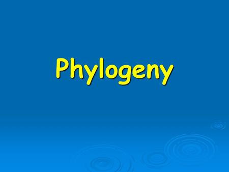 Phylogeny. Reconstructing a phylogeny  The phylogenetic tree (phylogeny) describes the evolutionary relationships between the studied data  The data.