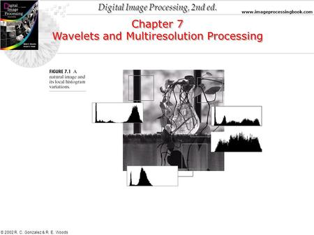 Digital Image Processing, 2nd ed. www.imageprocessingbook.com © 2002 R. C. Gonzalez & R. E. Woods Chapter 7 Wavelets and Multiresolution Processing Chapter.