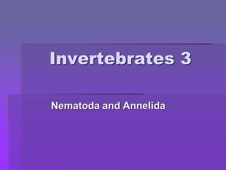 Invertebrates 3 Nematoda and Annelida. Phylum Nematoda: The roundworms.