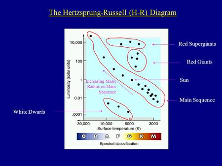Main Sequence White Dwarfs Red Giants Red Supergiants Increasing Mass, Radius on Main Sequence The Hertzsprung-Russell (H-R) Diagram Sun.