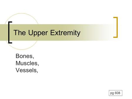 The Upper Extremity Bones, Muscles, Vessels, pg 608.