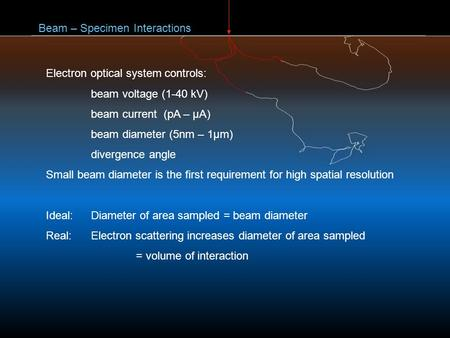Beam – Specimen Interactions Electron optical system controls: beam voltage (1-40 kV) beam current (pA – μA) beam diameter (5nm – 1μm) divergence angle.