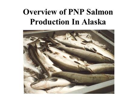 Overview of PNP Salmon Production In Alaska. The PNP Program Began in the Late 70's.