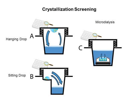 Hanging Drop Sitting Drop Microdialysis Crystallization Screening.