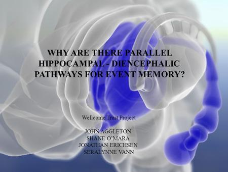 WHY ARE THERE PARALLEL HIPPOCAMPAL - DIENCEPHALIC PATHWAYS FOR EVENT MEMORY? Wellcome Trust Project JOHN AGGLETON SHANE O'MARA JONATHAN ERICHSEN SERALYNNE.