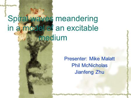 Spiral waves meandering in a model of an excitable medium Presenter: Mike Malatt Phil McNicholas Jianfeng Zhu.