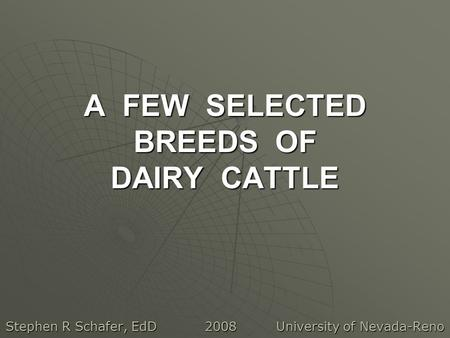 A FEW SELECTED BREEDS OF DAIRY CATTLE Stephen R Schafer, EdD 2008 University of Nevada-Reno.