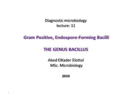 Diagnostic microbiology lecture: 11 Gram Positive, Endospore-Forming Bacilli THE GENUS BACILLUS Abed ElKader Elottol MSc. Microbiology 2010 Diagnostic.