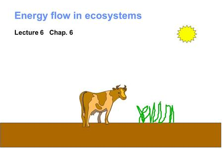 1 Energy flow in ecosystems Lecture 6 Chap. 6. 2 What is an ecosystem? System = regularly interacting and interdependent components forming a unified.
