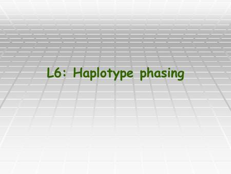"L6: Haplotype phasing. Genotypes and Haplotypes Each individual has two ""copies"" of each chromosome. Each individual has two ""copies"" of each chromosome."