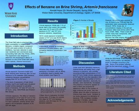 Effects of Benzene on Brine Shrimp, Artemia franciscana Kendall Asper (Dr. Nicole Okazaki), Spring 2008 Weber State University, Department of Zoology;