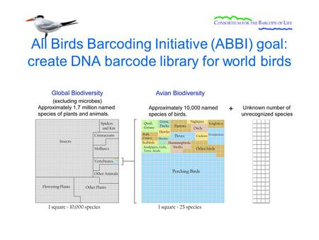 All Birds Barcoding Initiative (ABBI) goal: create DNA barcode library for world birds.