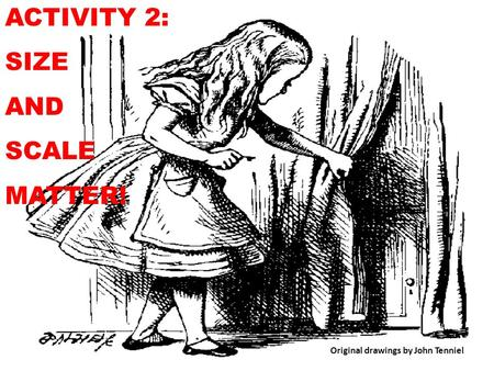 ACTIVITY 2: SIZE AND SCALE MATTER! Original drawings by John Tenniel.