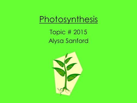 Photosynthesis Topic # 2015 Alysa Sanford. Plant Parts Review Parts of the Plant –Chlorophyll: The green pigment found in all photosynthetic plants. –Chlorophyll.