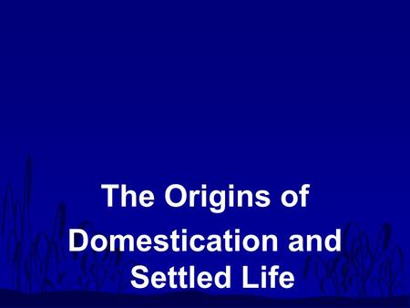 The Origins of Domestication and Settled Life. Transition : Upper Paleolithic to Mesolithic n Upper Paleolithic –40,000 - 10,000 ya –lifestyles –migrations.