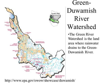 Green- Duwamish River Watershed The Green River Watershed is the land area where rainwater drains to the Green- Duwamish River.