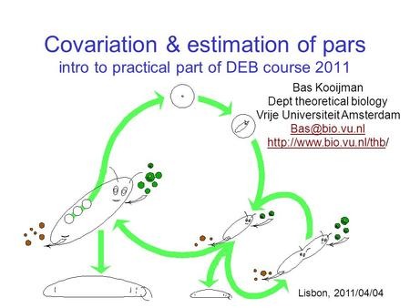 Covariation & estimation of pars intro to practical part of DEB course 2011 Bas Kooijman Dept theoretical biology Vrije Universiteit Amsterdam