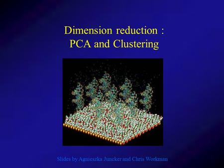 Dimension reduction : PCA and Clustering Slides by Agnieszka Juncker and Chris Workman.