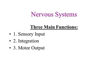 Nervous Systems Three Main Functions: 1. Sensory Input 2. Integration