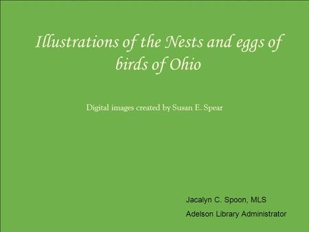 Illustrations of the Nests and eggs of birds of Ohio Digital images created by Susan E. Spear Jacalyn C. Spoon, MLS Adelson Library Administrator.