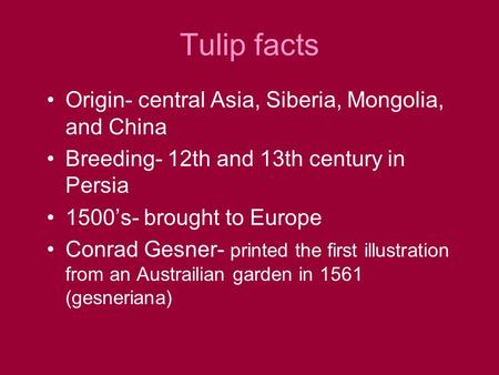 Tulip facts Origin- central Asia, Siberia, Mongolia, and China Breeding- 12th and 13th century in Persia 1500's- brought to Europe Conrad Gesner- printed.